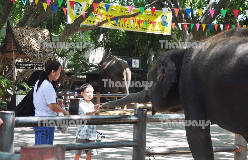 Samphran Elephant Ground & Zoo