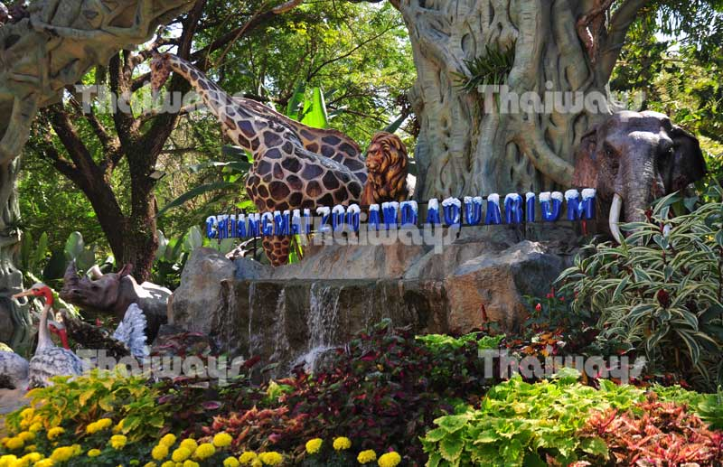 chiang-mai-zoo-by-tw-02