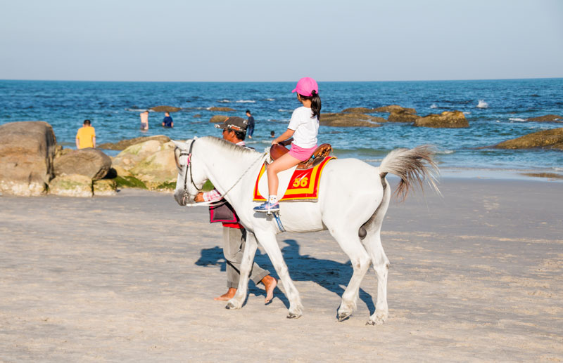 horse-riding-by-123-tw-01