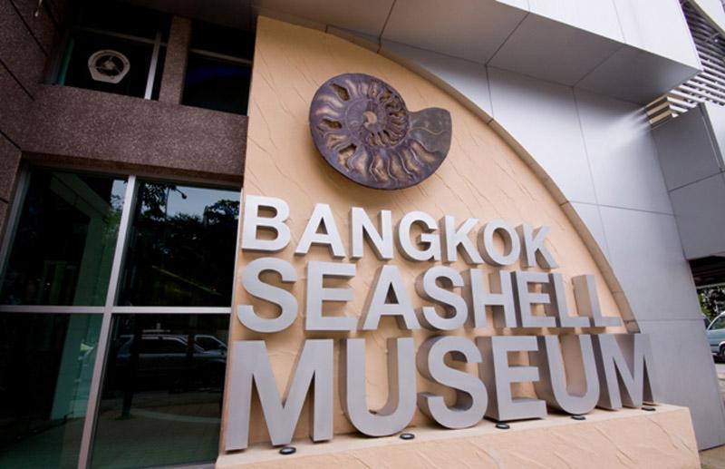 bsm-bangkok-seashell-museum-01
