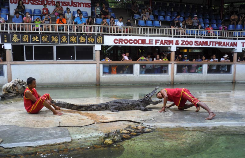 Samutprakan Crocodile Farm & Zoo